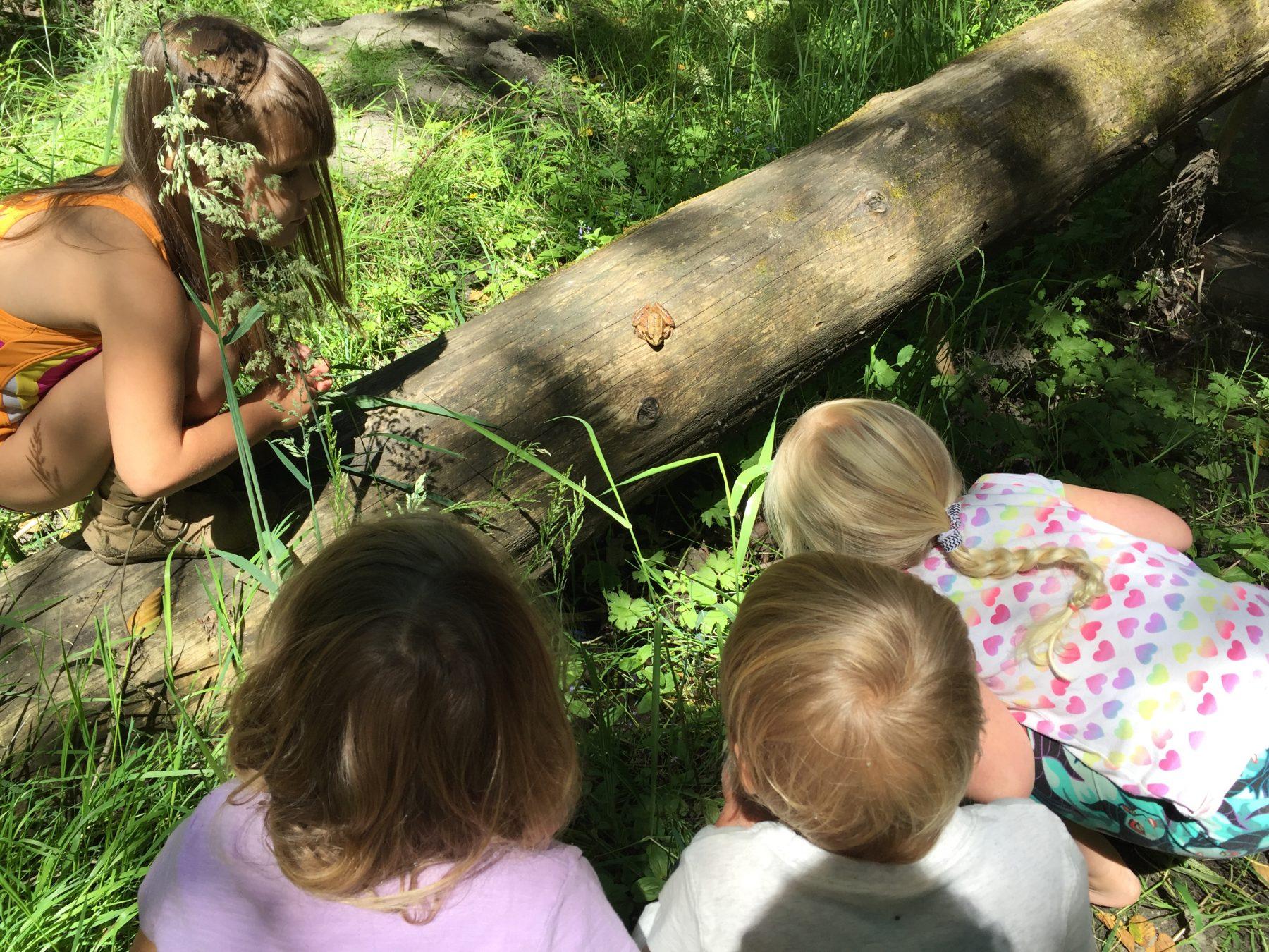 Children observing a frog